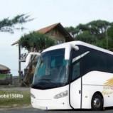 Bus Pariwisata Jogjakarta