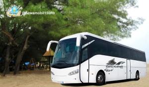 Sewa Bus Pariwisata Jogja Murah