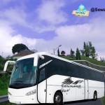 Sewa Bus Ke Jogjakarta Dari Berbagai Kota