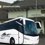 Sewa Bus Jogja Magelang Berangkat Pagi Siang dan Malam